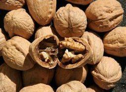Walnuts May Boost Semen Quality | REAL World Wellness | Scoop.it