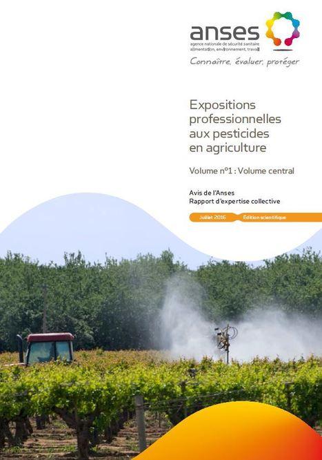 Embarras autour d'un rapport explosif sur la nocivité des pesticides | Chronique d'un pays où il ne se passe rien... ou presque ! | Scoop.it