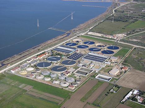 Plantas depuradoras de agua, olvidadas | Sistemas de Producción II | Scoop.it