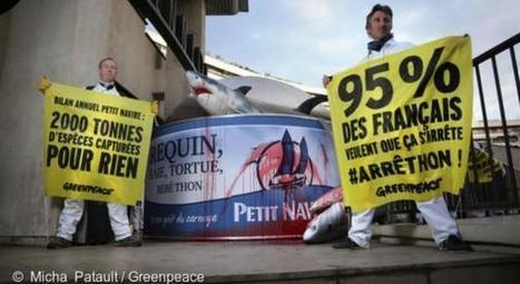 Pêche destructrice: Greenpeace s'attaque à Petit Navire | Carnets de plongée | Scoop.it