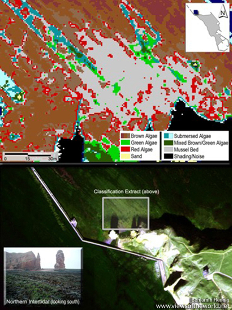 Hyperspectral remote sensing and analysis of intertidal zones: A contribution to monitor coastal biodiversity | Environmental Remote Sensing | Scoop.it