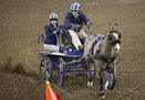 Arena carriage racing raises heart rates in drivers, crowds ... | The Mane Line | Scoop.it