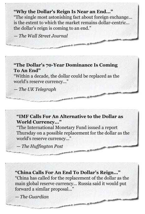 U.S. Dollar Goes Live | My Umbrella Cockatoo, TIKI | Scoop.it