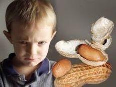 Noix et cacahuètes: aucune raison de les éviter pendant la grossesse - Journal de l'environnement   Steribed   Scoop.it