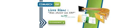 Livre blanc ERP - Bien choisir son ERP - Pierre Audoin Consultants | Logiciel ERP | Scoop.it