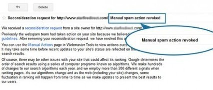 SubmitINme Now Offers Free Manual Backlink Audit by Google Experts | mistywallac links | Scoop.it