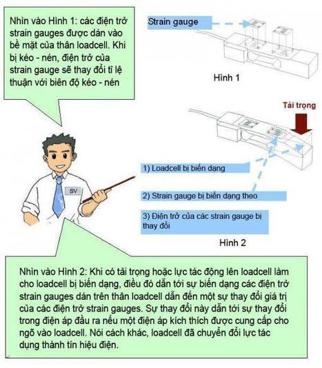 Load cell là gì?hoạt động như thế nào? » cân điện tử Việt Mỹ | nơi trao đổi của dân CÂN ĐIỆN TỬ | Scoop.it
