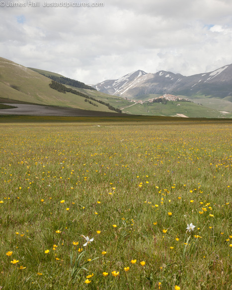 Between Umbria and Marche: Castelluccio and the Apennine table land | fashion home | Scoop.it