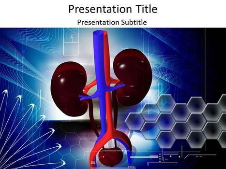 Kidney Function PowerPoint Templates | renal failure | Scoop.it