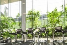 Can A Gym That Converts Workout Energy To Electricity Produce Meaningful Efficiency Benefits? | Sustain Our Earth | Scoop.it