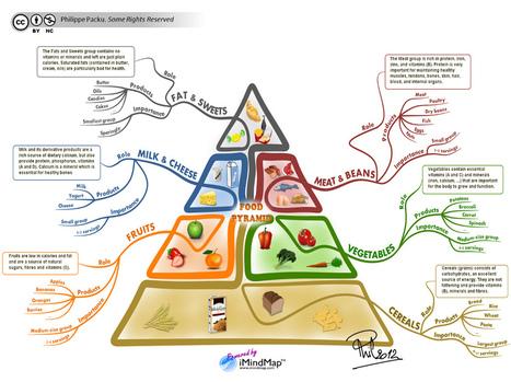 Dessine-moi une idée - Blog par Philippe Packu - Cartes heuristiques et processus cognitifs | Cartes mentales | Scoop.it