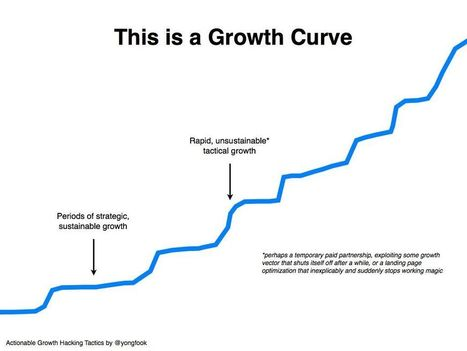 How To Use Growth Hacking To Attract and Retain Customers   Digital Brand Marketing   Scoop.it