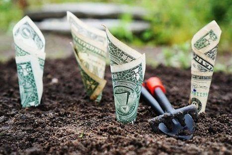 Ouvrez le capital de votre commerce aux fonds d'investissement | Forum des commerces | Scoop.it