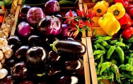 Parents végétaliens : pourquoi font-ils peur ? | Vegan Nutrition | Scoop.it