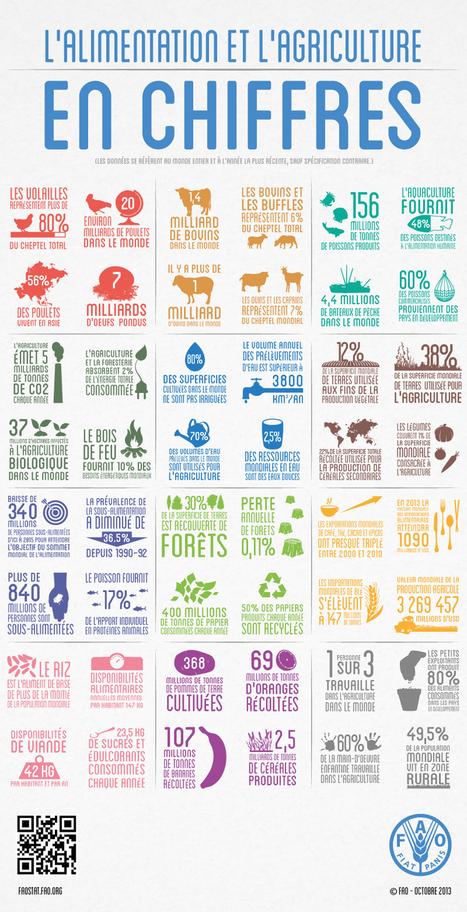 L'alimentation et l'agriculture en chiffres | Food Sciences and Technology | Scoop.it