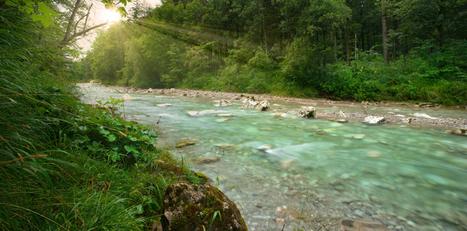 Cómo cuidar las aguas de un río - Ecoportal.net | Agua | Scoop.it