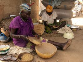 African countries threatened by food crisis attempt to contain prices | Food Security | Scoop.it