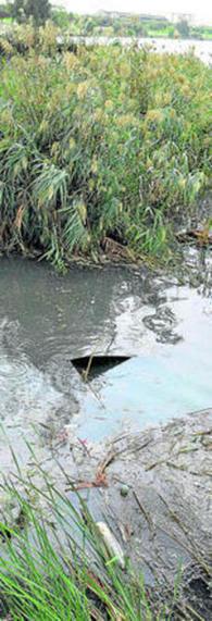 Un río en estado de abandono por Fernándo Pérez Avila | Blog del Agua | Agua | Scoop.it