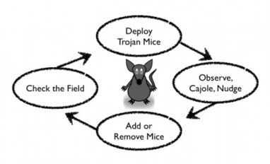 On Trojan Mice | Harold Jarche | Futurable Planet: Answers from a Shifted Paradigm. | Scoop.it