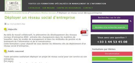 Formation Serda : Déployer un réseau social d'entreprise | Veille et Intelligence Economique | Scoop.it