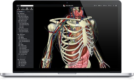 #BioDigital  3D Human Visualization Platform for Anatomy and Disease #FREE #gratis | Pedalogica: educación y TIC | Scoop.it