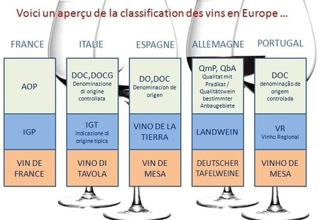 Comment comprendre la classification des vin ? | Le vin pour les débutants | Scoop.it