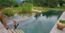 Natural Pools: A Sustainable Alternative To Chlorine | Aquaponics & Permaculture | Scoop.it