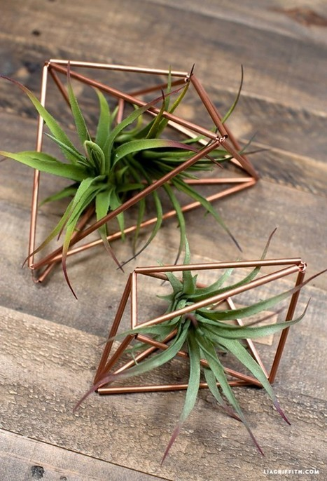 5 Creative DIY Hanging Planters | My Favorite Things | DIY & Crafts | Scoop.it