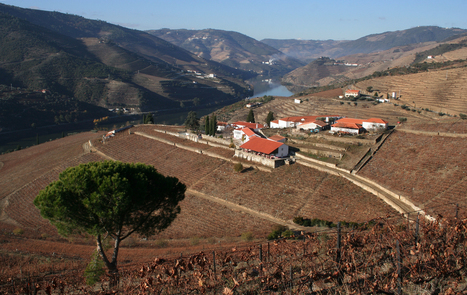 Quinta Nova Hotel Rural | The Douro Index | Scoop.it