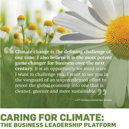 Caring for Climate WEBINAR: Responsible Corporate Engagement On Climate Change Policy | World Resources Institute | Sustain Our Earth | Scoop.it