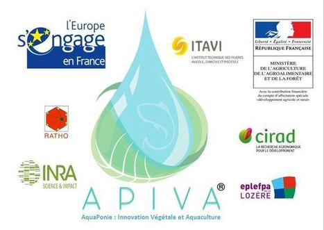 Sondage APIVA / Colloque N°2 au LYCEE PROFESSIONNEL DE GUERANDE . Les 21 et 22 Juin 2016 . | 3A : Actualités Aquacoles & Aquaponiques | Scoop.it