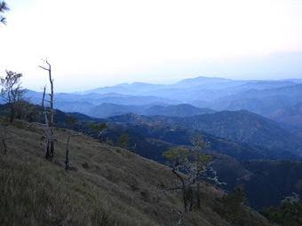 High Altitude Honeymoon in Mt. Pulag ~ Jovial Wanderer | Philippine Travel | Scoop.it