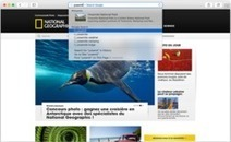 Safari : dix-sept failles WebKit à corriger | Apple, Mac, iOS4, iPad, iPhone and (in)security... | Scoop.it