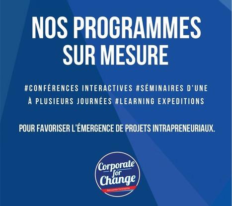 Le #Programme #Intrapreneur avec #TicketforChange   RSE et Développement Durable   Scoop.it