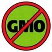 Anti-GMO Groups in the U.S. | GREGORY GMO | Scoop.it