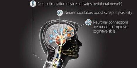 Con TNT, DARPA quiere avanzar en la neuroestimulación cognitiva | APRENDIZAJE | Scoop.it