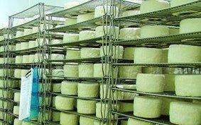 Congrès des fromagers à Troyes en septembre. | Aube en Champagne | Scoop.it