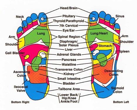 How Do Detox Foot Pads Work - Wellness Medicine Shop | Top Stories | Scoop.it