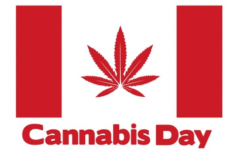 Cannabis Day Protest and Farmers Market at the Vancouver Art ... | www.tokelist.com | Scoop.it