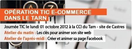 Action TIC e-commerce : Journée TIC du 1 octobre 2012 | Site vitrine, marchand et mobilité | Scoop.it