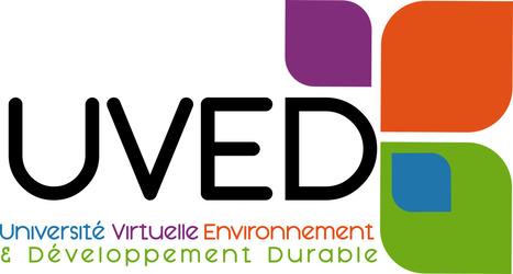 Ressource Université Virtuelle Environnement : Espèces invasives (insectes et îles) à la Réunion   Insect Archive   Scoop.it