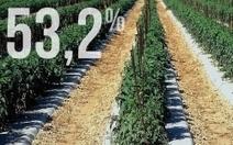 Agriculture : la France doit produire mieux pour nourrir plus de monde | Questions de développement ... | Scoop.it