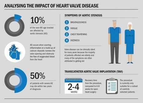 Replacement valves save lives | Heart and Vascular Health | Scoop.it