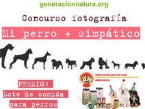 La franquicia de mascotas Husse organiza un concurso en ... - Lukor | EUDOG | Scoop.it