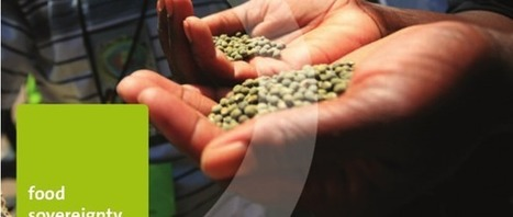 US force feeds GM crops to African nations, says new report - Friends of the earth international | Permaculture, Homesteading, Ecology, & Bio-Remediation | Scoop.it