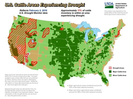 US drought coverage down to least amount in 5+ years | Grain du Coteau : News ( corn maize ethanol DDG soybean soymeal wheat livestock beef pigs canadian dollar) | Scoop.it