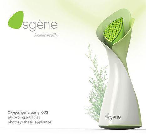 Une plante artificielle pour purifier l'air de la maison | Qualité de l'air | Scoop.it