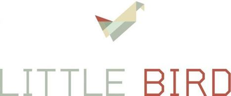 Is Little Bird the next big digital trend? | Learning with Digital Media | Scoop.it
