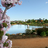 Country Accommodation Dubbo