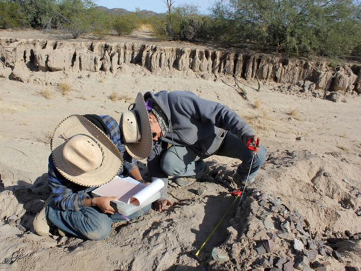 Exploran casas de los primeros agricultores del desierto de Sonora (México) | Terra Antiquae | Amériques | Scoop.it